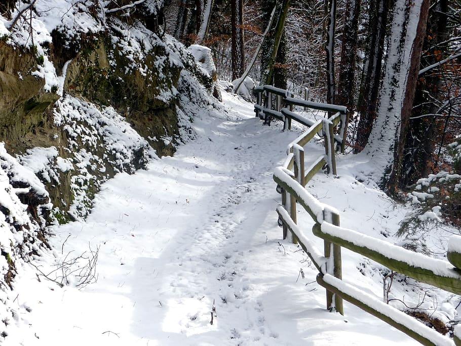 Winter in Bowring Park, St. John's, Newfoundland