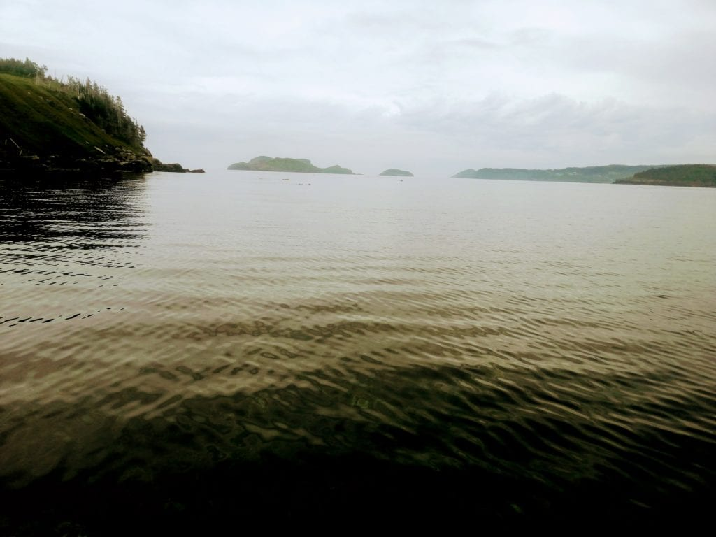 Sometimes cloudy foggy days come with calm coastal waters ideal for paddleboarding in the Witless Bay marine ecological reserve